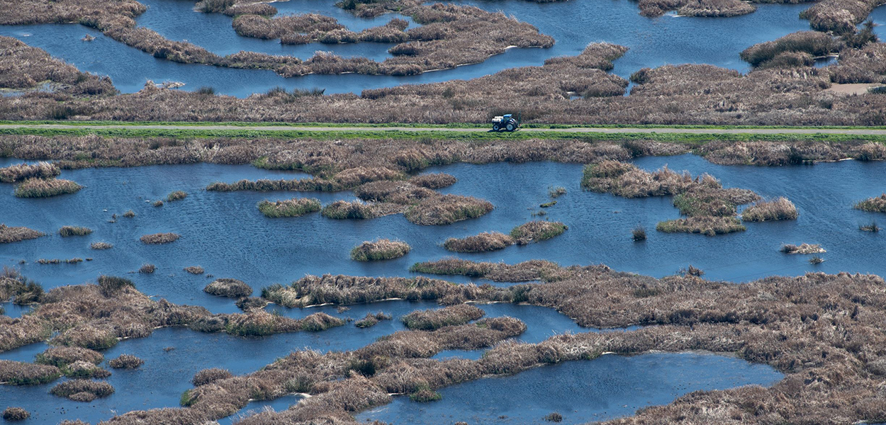 Aerial view of wetlands on Sherman Island, with a tractor parked on a levee, in part of the Sacramento-San Joaquin Delta.