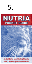 "The front cover of the properly folded nutria pocket guide. Step five of the folding instructions is to turn the guide over after completing step four to see the ""Nutria Pocket Guide"" cover page at the front."