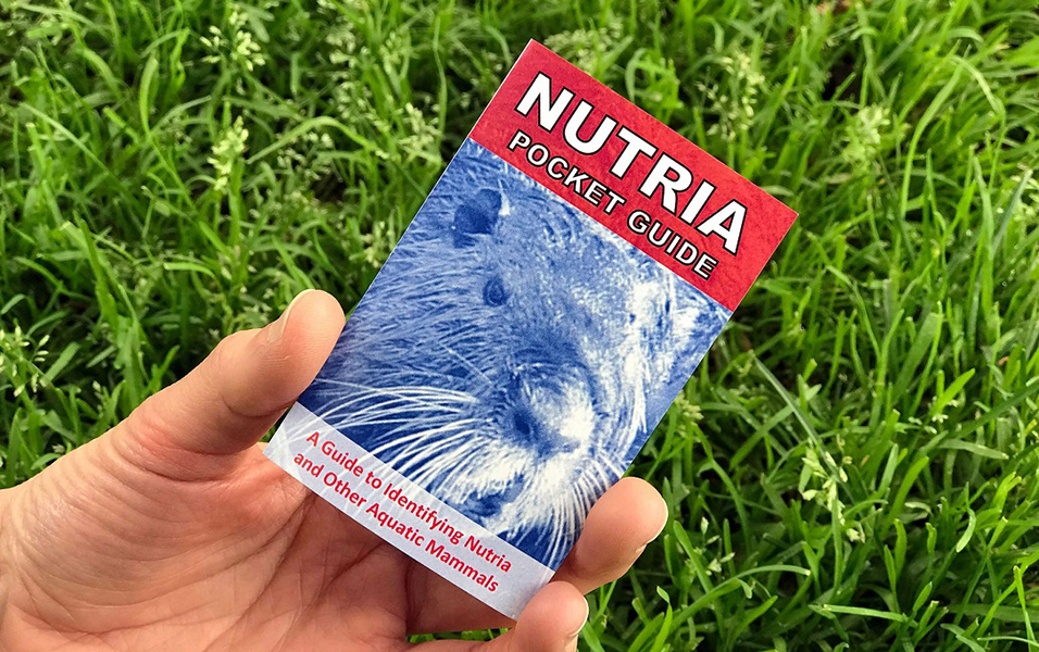 A person's hand holding the pocket guide to identifying Nutria.